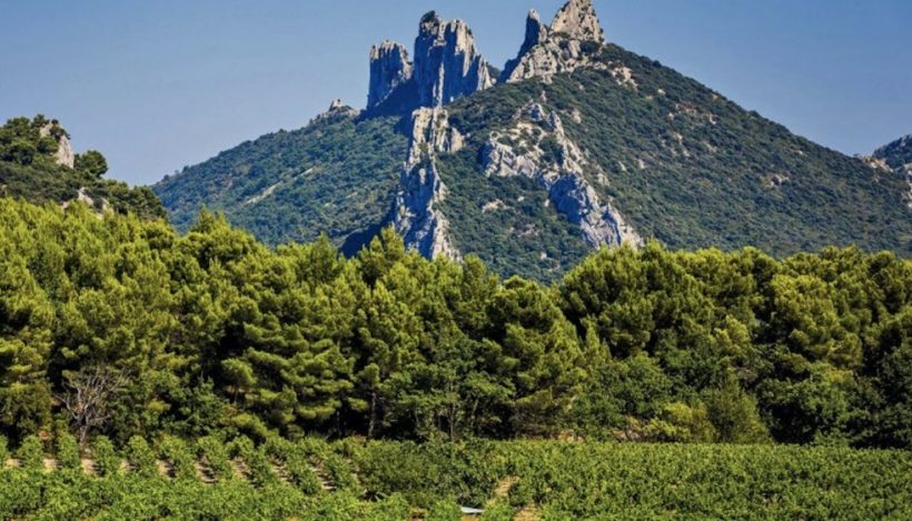 Vignes et montagnes